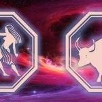 знаки близнецов и быка
