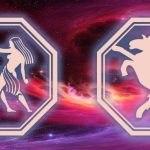 знаки близнецов и козы