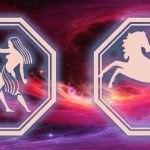 гороскоп для близнецов и лошади на 2020 год