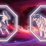 знаки близнецов и тигра