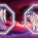 гороскоп для девы-тигра 2020