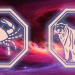 талисман рака и тигра