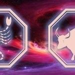 знаки скорпиона и быка