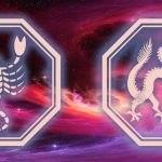 знаки скорпиона и дракона