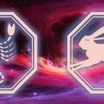 знаки скорпиона и кролика