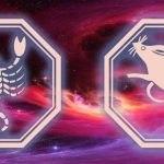знаки скорпиона и крысы