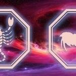 знаки скорпиона и петуха
