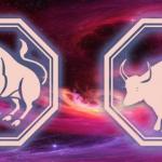 сочетание знаков тельца и быка в 2020 году