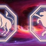 гороскоп для тельца козы