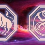 знак тельца и обезьяны на звездном небе