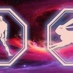 Весы-Кролик