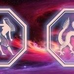 знаки близнецов и дракона