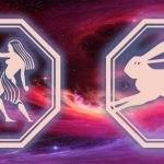 гороскоп для близнецов и кролика на 2020 год