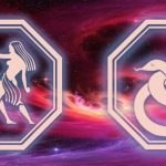 знаки близнецов и змеи