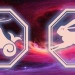 сочетание козерога и кролика