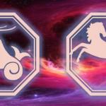 козерог-лошадь на фоне космоса