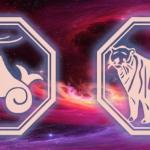 Гороскоп Козерог-Тигр на 2020 год