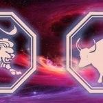 гороскоп для льва и быка на 2020 год
