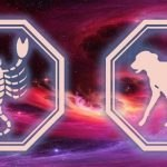 знаки скорпиона и собаки