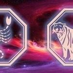 гороскоп для скорпиона и тигра на 2020 год