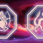 гороскоп Телец-Дракон на 2020 год