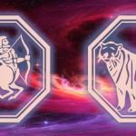 стрелец и тигр