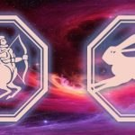 знака тельца и кролика