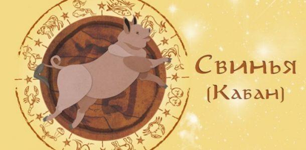 Восточный гороскоп 2020 свинья