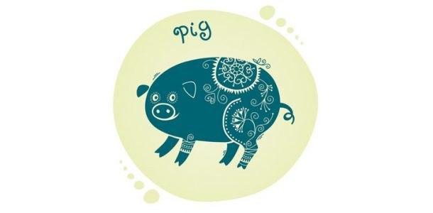 свинья женщина 2020 гороскоп