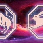 телец и кролик