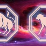 гороскоп телец-собака в 2020 году