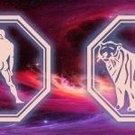 Весы-Тигр