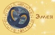 Восточный гороскоп на 2020 год для Змеи