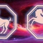 овен-лошадь