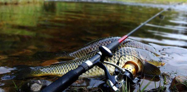 изменение в законах о рыбалке